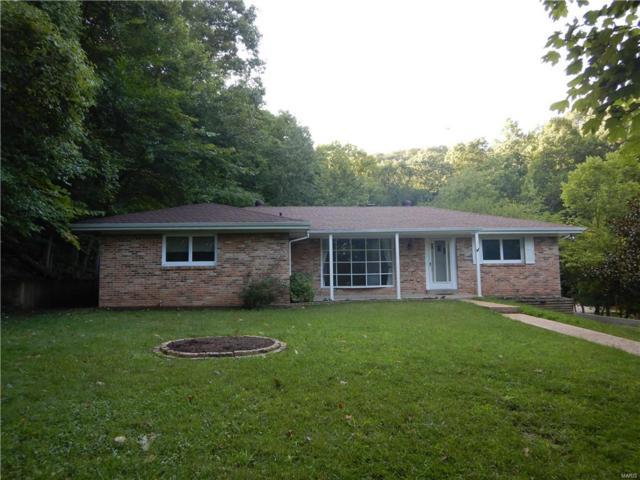125 Jensen Hills Drive, Fenton, MO 63026 (#19002494) :: PalmerHouse Properties LLC