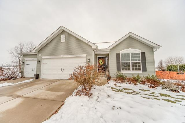 3501 Harbor Way, Shiloh, IL 62221 (#19003200) :: St. Louis Finest Homes Realty Group