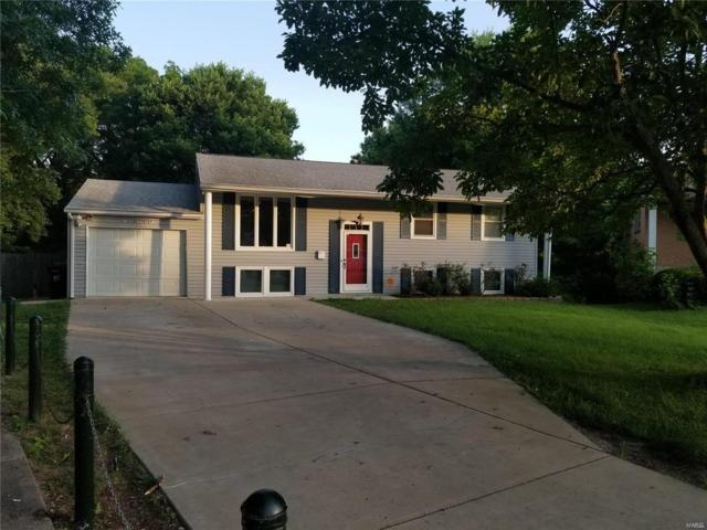 4118 Celtic, St Louis, MO 63125 (#19003257) :: Clarity Street Realty