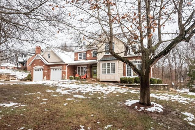 1368 Rocky Creek Court, Belleville, IL 62220 (#19003353) :: Walker Real Estate Team