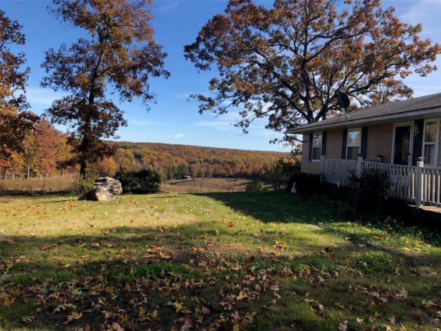 552 Highway V, Steelville, MO 65565 (#19003518) :: Barrett Realty Group