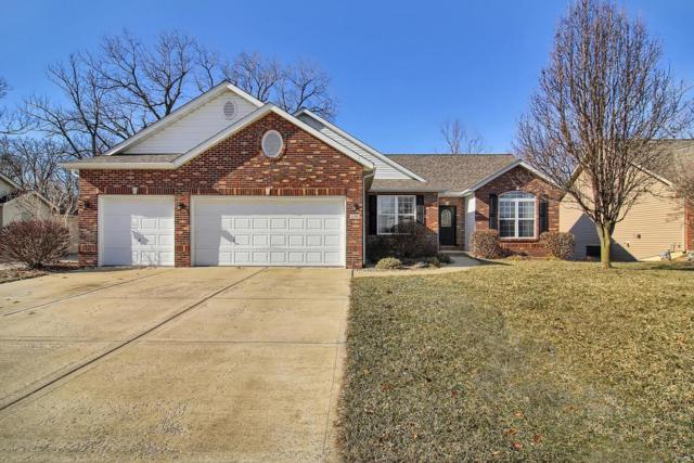 248 Harbor Mill Drive, Troy, IL 62294 (#19003546) :: Fusion Realty, LLC