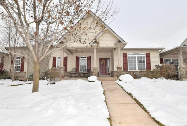 131 Scenic Pass, Saint Peters, MO 63376 (#19003571) :: The Kathy Helbig Group