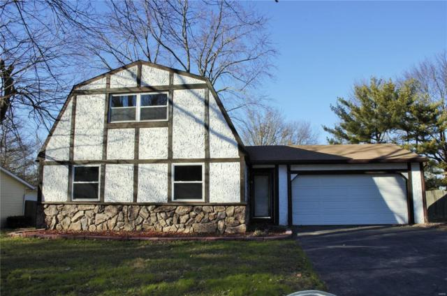 225 Country Meadow, Belleville, IL 62221 (#19003711) :: Fusion Realty, LLC