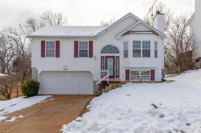7661 Meadowbrook Lane, Barnhart, MO 63012 (#19003744) :: Walker Real Estate Team
