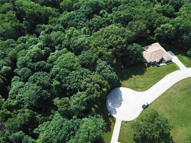 12 Brookewood Drive, Caseyville, IL 62232 (#19003769) :: The Kathy Helbig Group