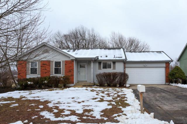 21 Valley View Drive, Saint Peters, MO 63376 (#19003785) :: The Kathy Helbig Group