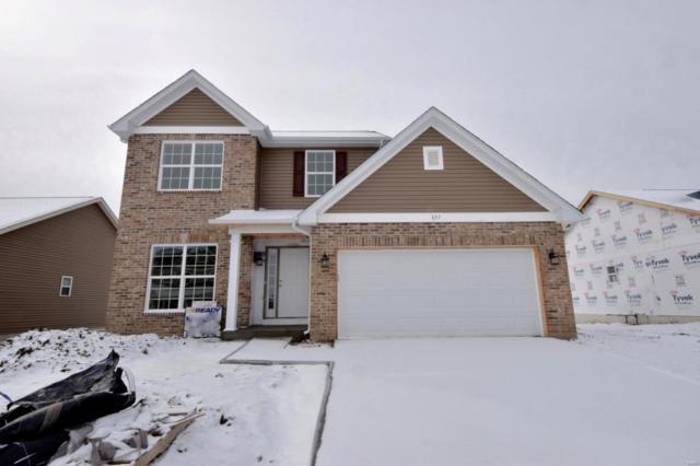 857 Bluff Ridge Lane, Shiloh, IL 62221 (#19003821) :: Fusion Realty, LLC