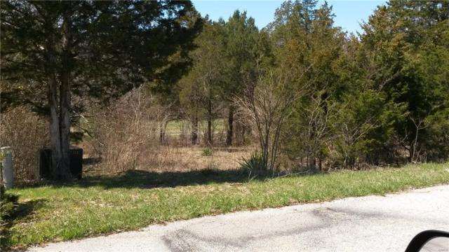 141 Cottonblossom Drive Golf Lot 24,Sec, Hillsboro, MO 63050 (#19003832) :: Parson Realty Group