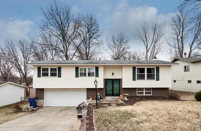 41 Harris Drive, Saint Peters, MO 63376 (#19003864) :: St. Louis Finest Homes Realty Group