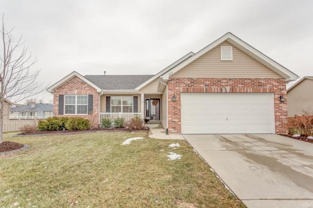 235 Edbrooke Drive, Shiloh, IL 62221 (#19003902) :: Kelly Hager Group | TdD Premier Real Estate