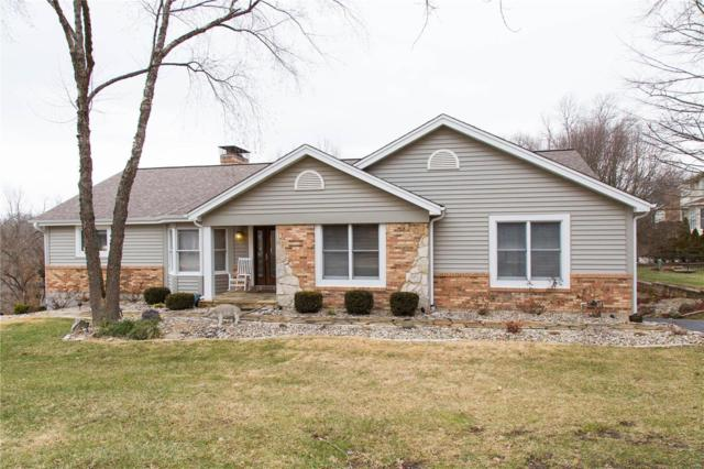 16309 Idlewood Court, Wildwood, MO 63005 (#19004113) :: The Kathy Helbig Group