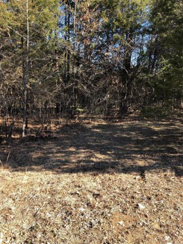 0 Briarwood Ests Lot 17 Block B, De Soto, MO 63020 (#19004523) :: The Kathy Helbig Group