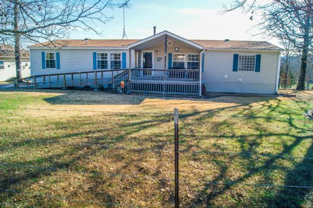20 Cr 521, Gainesville, MO 65655 (#19004716) :: The Becky O'Neill Power Home Selling Team