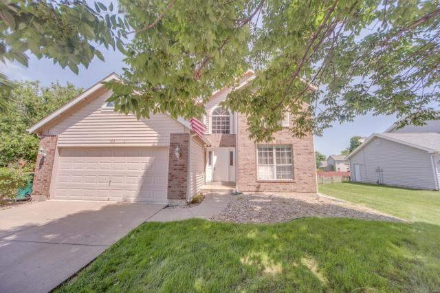 304 Schwarz Meadow Court, O'Fallon, IL 62269 (#19004927) :: Kelly Hager Group | TdD Premier Real Estate
