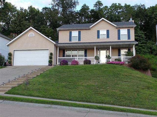 2589 Lakeshore Dr, Columbia, IL 62236 (#19005210) :: Clarity Street Realty