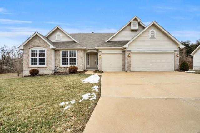 4679 Behlmann Farms Boulevard, Florissant, MO 63034 (#19005602) :: Kelly Hager Group | TdD Premier Real Estate