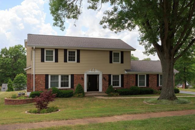411 Sunnyslope Drive, Ballwin, MO 63011 (#19005945) :: Kelly Hager Group | TdD Premier Real Estate