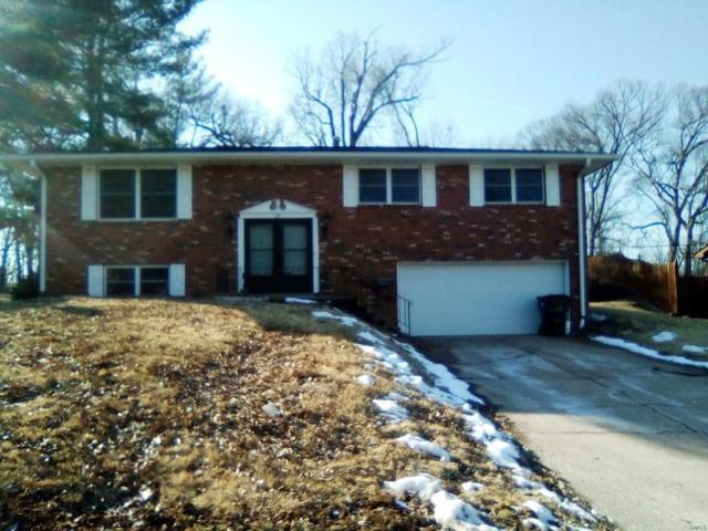 25 Fourscore Drive, Belleville, IL 62226 (#19006820) :: Fusion Realty, LLC