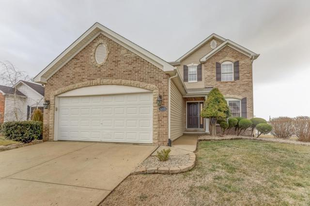 1213 Gulfstream Way, Mascoutah, IL 62258 (#19006832) :: The Kathy Helbig Group