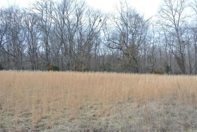 0 Lot 3 Tyler Branch Road, Perryville, MO 63775 (#19006852) :: Kelly Hager Group | TdD Premier Real Estate