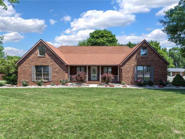 207 W Moro Drive, Moro, IL 62067 (#19007788) :: Kelly Hager Group   TdD Premier Real Estate
