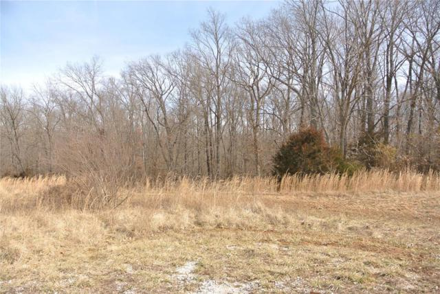 0 Lot 34 Woods View Lane, Perryville, MO 63775 (#19008078) :: RE/MAX Vision