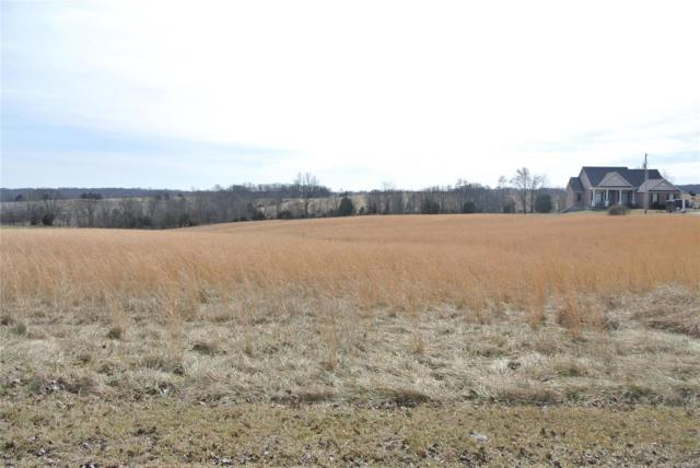 0 Lot 16 Tyler Branch Road, Perryville, MO 63775 (#19008339) :: The Kathy Helbig Group