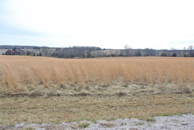 0 Lot 17 Tyler Branch Road, Perryville, MO 63775 (#19008342) :: The Kathy Helbig Group