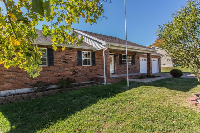 19564 Lilly Lane, Waynesville, MO 65583 (#19008656) :: RE/MAX Professional Realty