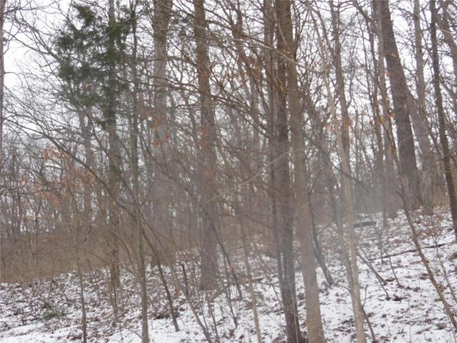 4610 Vixen Circle, Wildwood, MO 63069 (#19008760) :: RE/MAX Vision