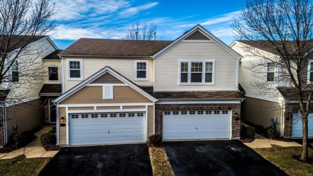 304 Kingston Terrace Court, Saint Charles, MO 63301 (#19009181) :: Holden Realty Group - RE/MAX Preferred