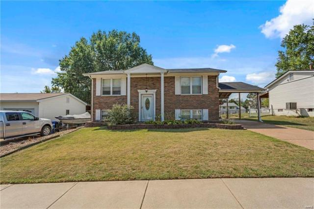 1892 San Luis Rey Parkway, Fenton, MO 63026 (#19009356) :: The Becky O'Neill Power Home Selling Team