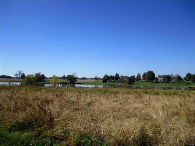 3407 Arbor View Court, Freeburg, IL 62243 (#19009558) :: Peter Lu Team