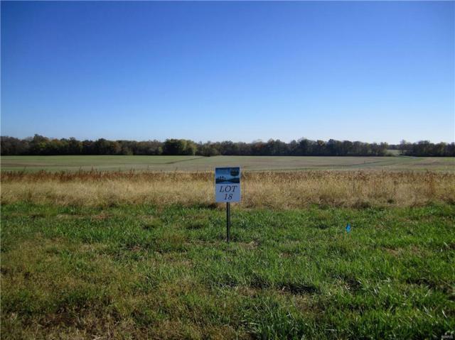3408 Arbor View Court, Freeburg, IL 62243 (#19009572) :: Peter Lu Team