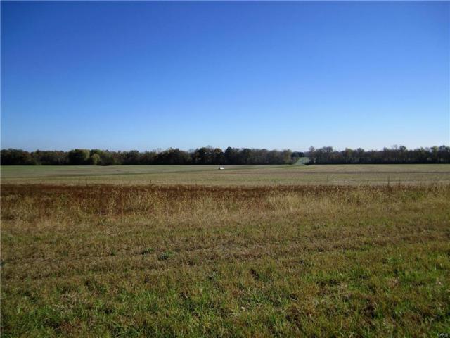 3444 Arbor View Court, Freeburg, IL 62243 (#19009578) :: Peter Lu Team