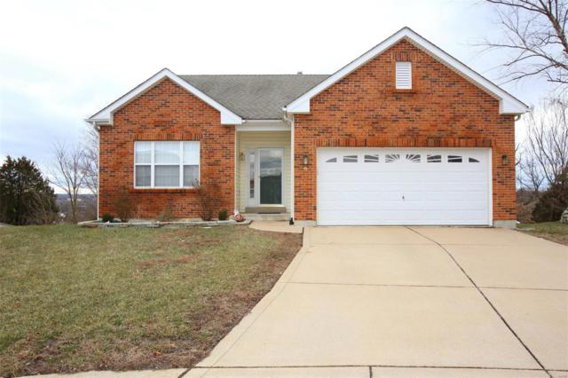 9 Overlook Place, St Louis, MO 63129 (#19009605) :: Clarity Street Realty