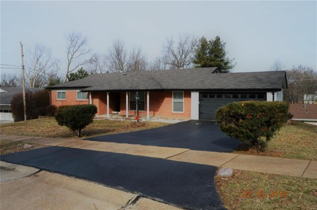 12047 Lake Placid Drive, St Louis, MO 63146 (#19009662) :: Clarity Street Realty