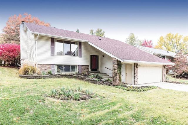 1931 Springtree Drive, Maryland Heights, MO 63043 (#19009791) :: RE/MAX Professional Realty