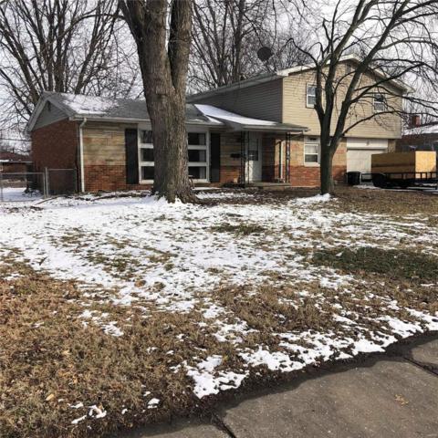3320 Johnson Rd, Granite City, IL 62040 (#19009834) :: Fusion Realty, LLC
