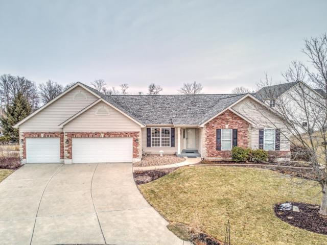 1732 Discovery Drive, Wentzville, MO 63385 (#19010187) :: St. Louis Finest Homes Realty Group