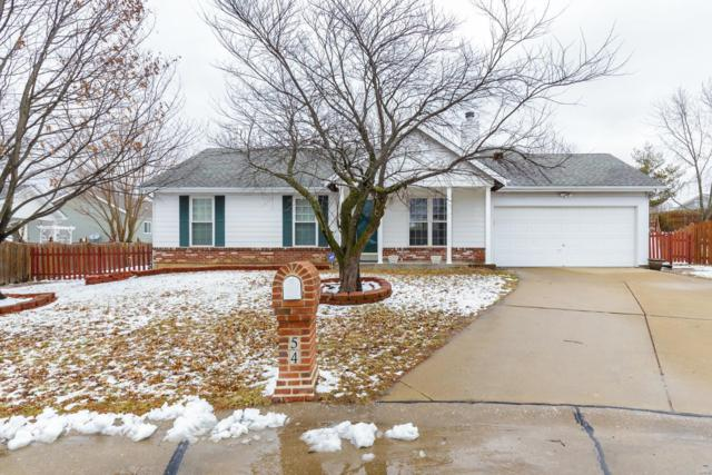 54 Bucks Ridge Court, Saint Peters, MO 63304 (#19010193) :: St. Louis Finest Homes Realty Group