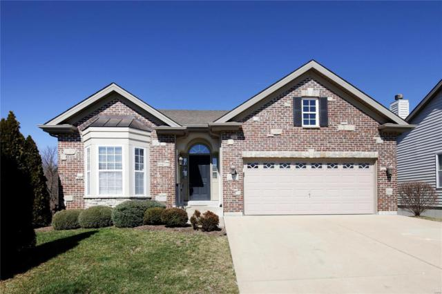 13431 Terra Vista Drive, St Louis, MO 63146 (#19010401) :: Ryan Miller Homes