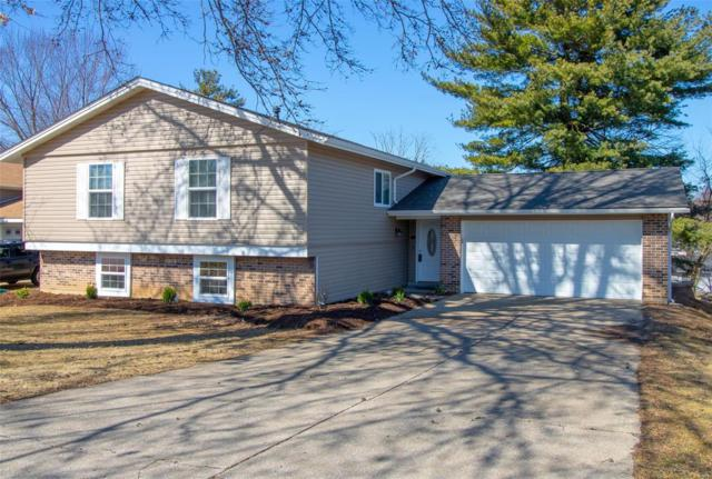 2 Amber Court, Saint Charles, MO 63303 (#19010780) :: Clarity Street Realty