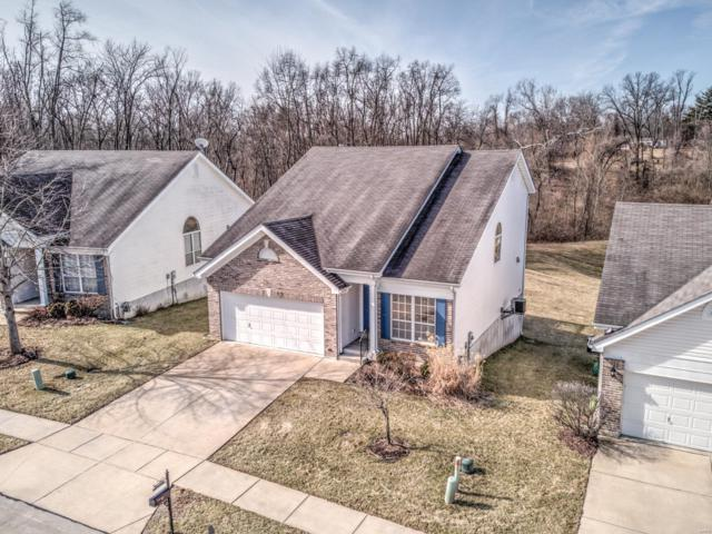143 Hollow Brook Drive, Florissant, MO 63034 (#19011128) :: RE/MAX Professional Realty
