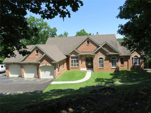 800 Wildflower Valley Drive, High Ridge, MO 63049 (#19011418) :: Hartmann Realtors Inc.