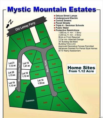 4 Mountain View Trail, Imperial, MO 63052 (#19011712) :: Peter Lu Team