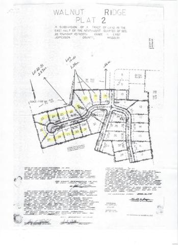 0 Walnut Court, High Ridge, MO 63049 (#19012753) :: The Kathy Helbig Group