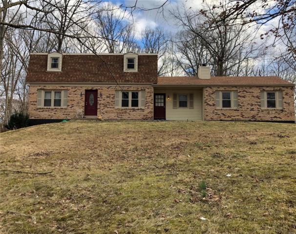4424 Hickory Lane, Hillsboro, MO 63050 (#19013755) :: Matt Smith Real Estate Group