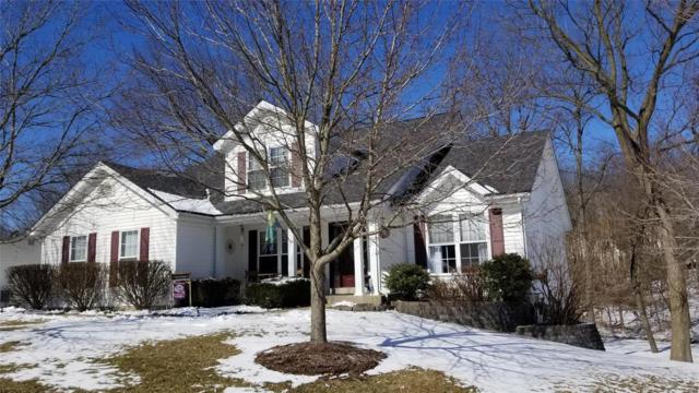 21 Fawn Valley Circle, Saint Peters, MO 63376 (#19014156) :: Clarity Street Realty